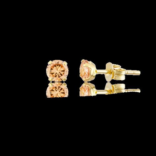 Altın 6 mm Tırnaklı Şampanya Renk Vidalı Küpe